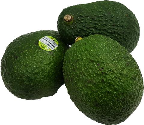 아보카도-저용량.png