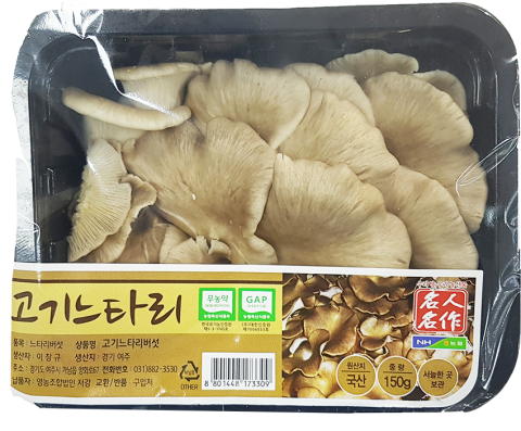 고기느타리버섯.png